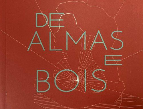 DE ALMAS E BOIS